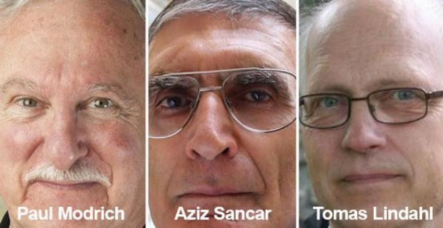 Türk bilim adamına Nobel Kimya Ödülü