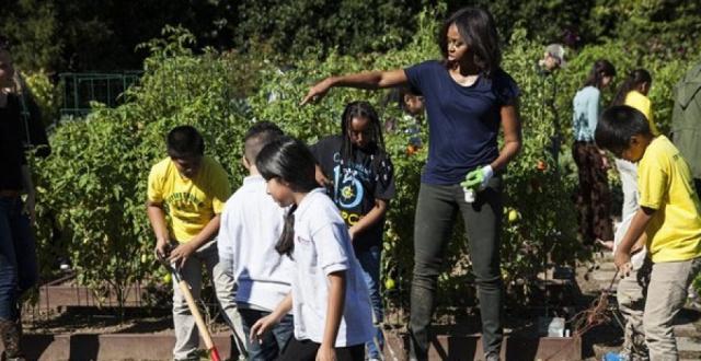 Beyaz Saray'ın bahçesinde sonbahar hasadı